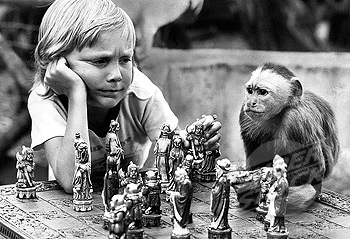 Boy and monkey playing chess, Manchester, September 1973