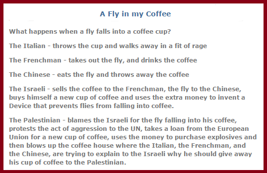 fly in my coffee