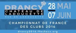 FrenchTchampionship LOGO