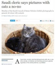 Why am I not surprised? http://www.timesofisrael.com/saudi-cleric-says-pictures-with-cats-a-no-no/